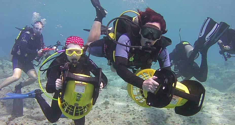 Grand Cayman, Kids Sea Camp