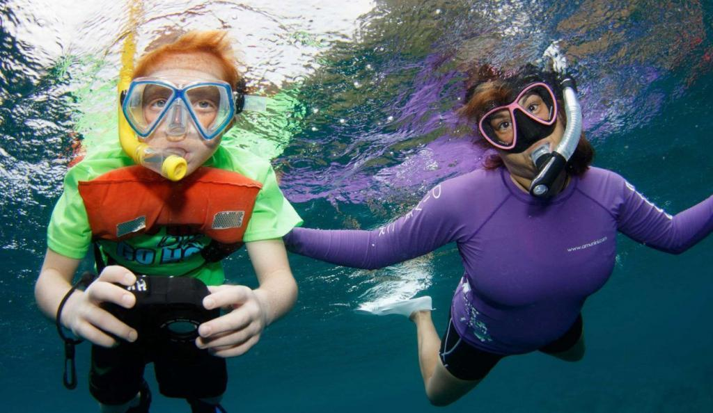 Seal, Kids dive training, family vacations
