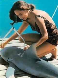 Shark Lady, Dive Training