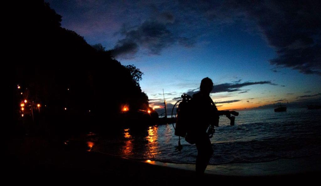 Night Diving, Kids Sea Camp
