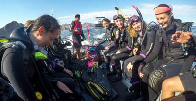 Mexico, Sea of Cortez, Kids and diving, Sea lions