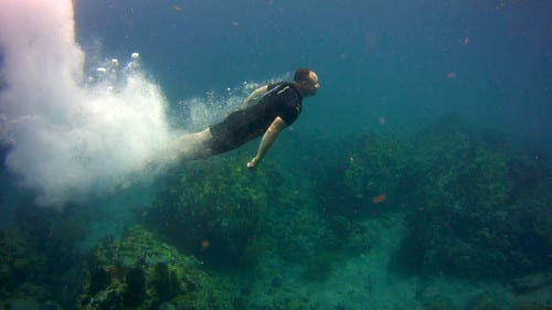 Handicapped divers, dive training, Kids Sea Camp, family travel