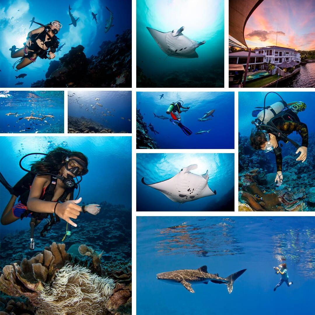 diving yap micronesia