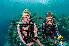 A love of diving, Kids Sea Camp, Dive training,